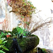 Fontaine du Verdon