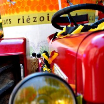 Nombreuses fêtes ( miel, lavande, blé...) à Riez et alentours
